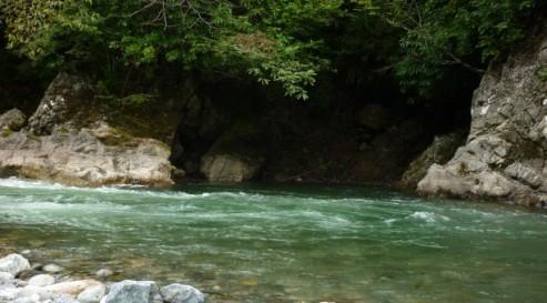 River - Nia