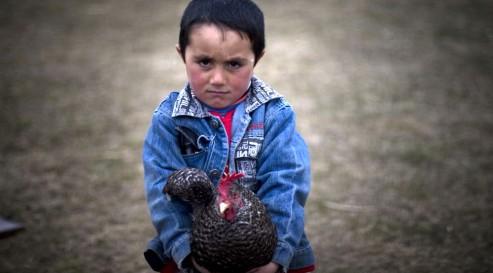 "Photo de la série ""The Yezidis"", d'Anahit Hayrapetyan"